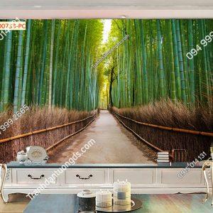 Tranh dán tường con con đường ở Rừng Tre Arashiyama Nhật Bản 00733
