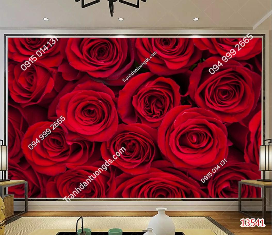 Tranh dán tường hoa hồng đỏ - 13541 demo