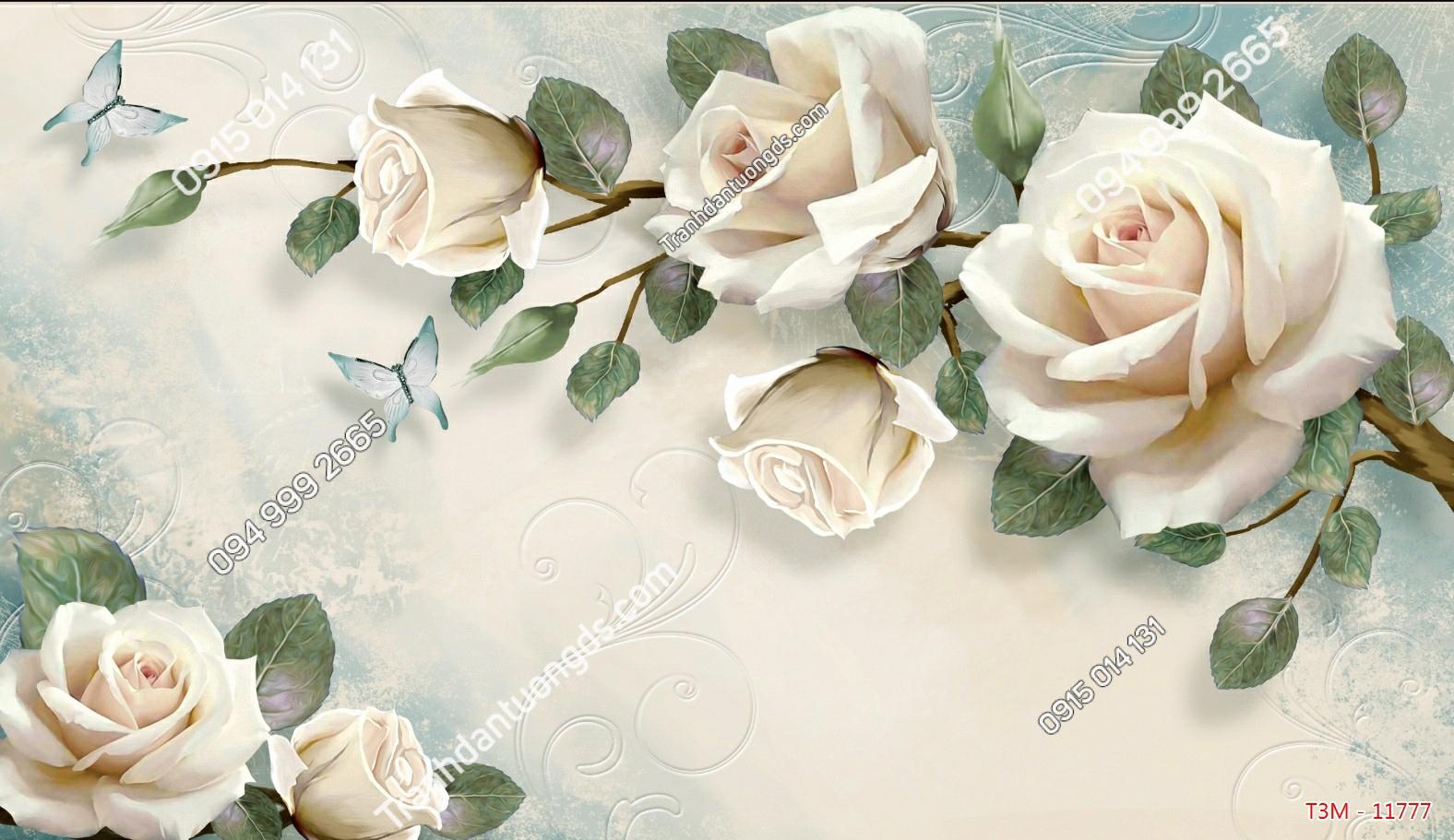 Tranh dán tường hoa hồng trắng - 11777 demo