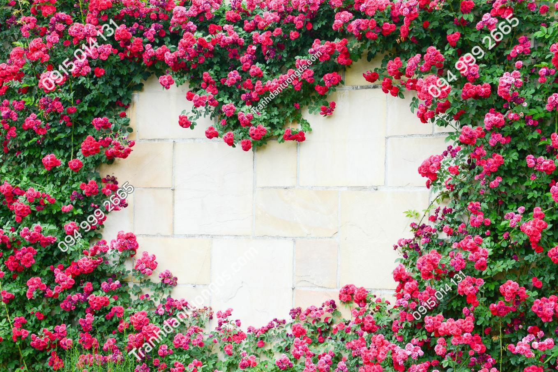 Tranh dán tường trái tim hoa hồng - 15212 DEMO