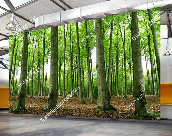 Tranh dán tường rừng cây - DS12250809