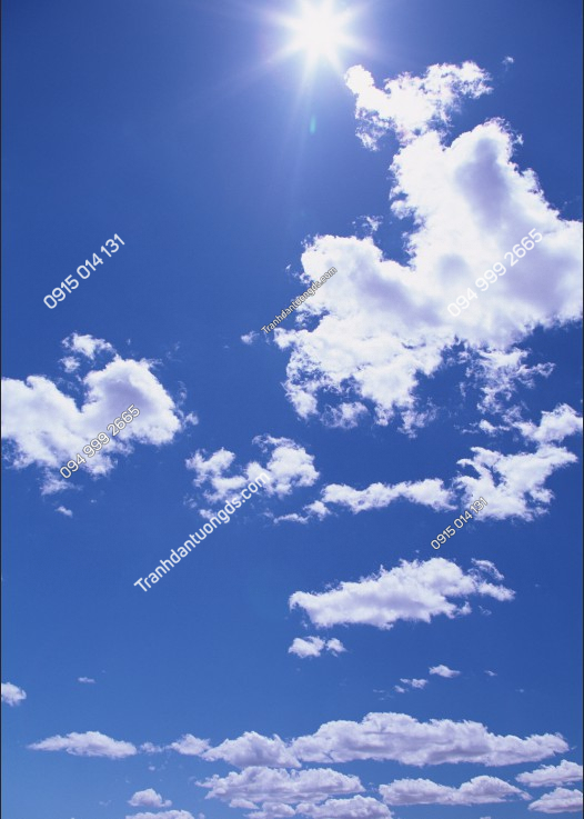 Tranh dán trần mây - 10373 demo