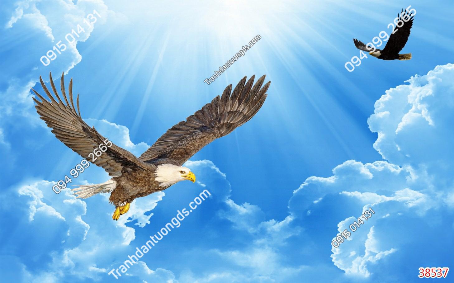 Tranh dán trần mây chim đại bàng 38537