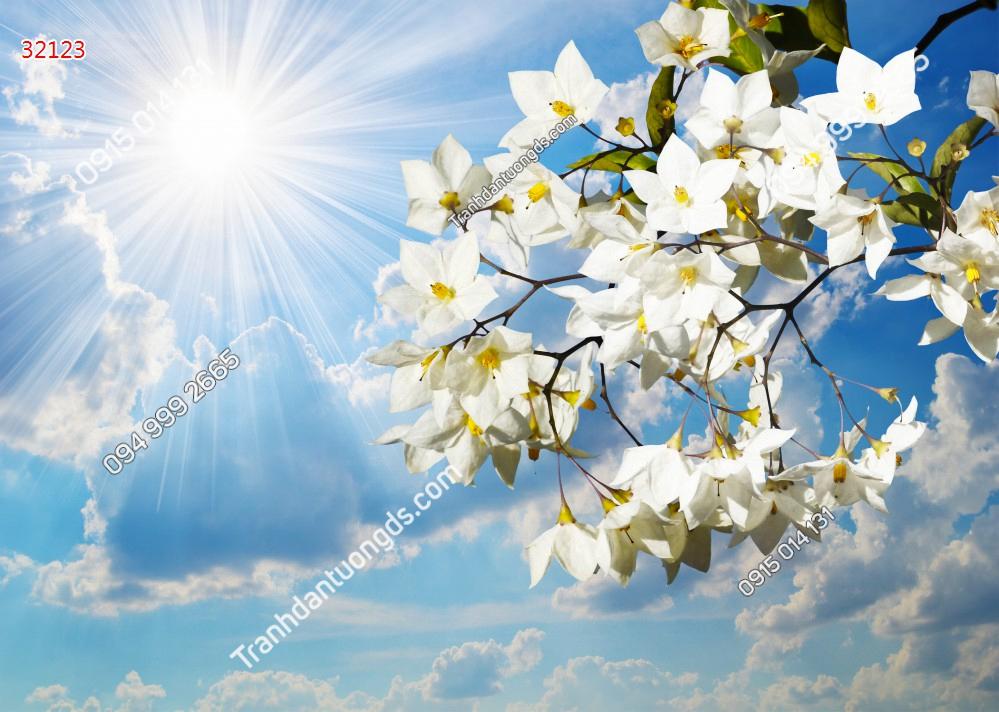 Tranh dán trần mây và hoa 32123