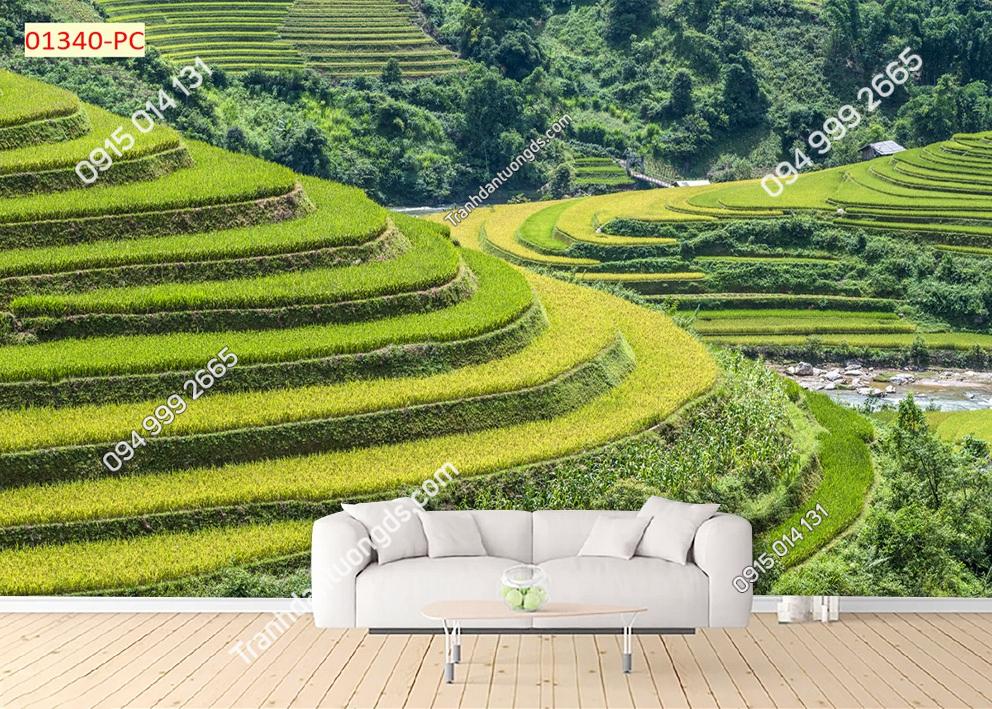Tranh tường ruộng bậc thang dán phòng khách 01340