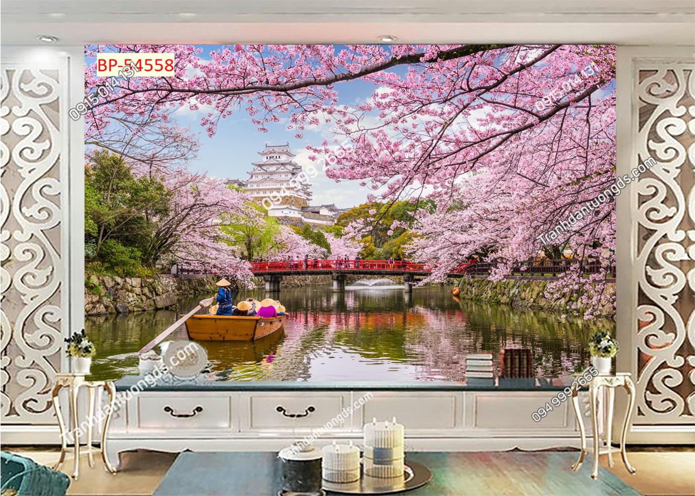 Tranh tường hoa anh đào Nhật Bản 54558