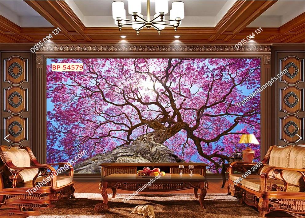 Tranh tường hoa anh đào Nhật Bản 54579