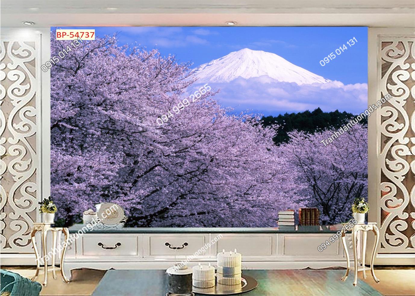 Tranh tường hoa anh đào Nhật Bản 54737
