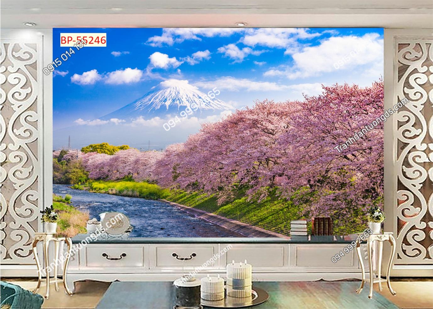 Tranh tường hoa anh đào Nhật Bản 55246