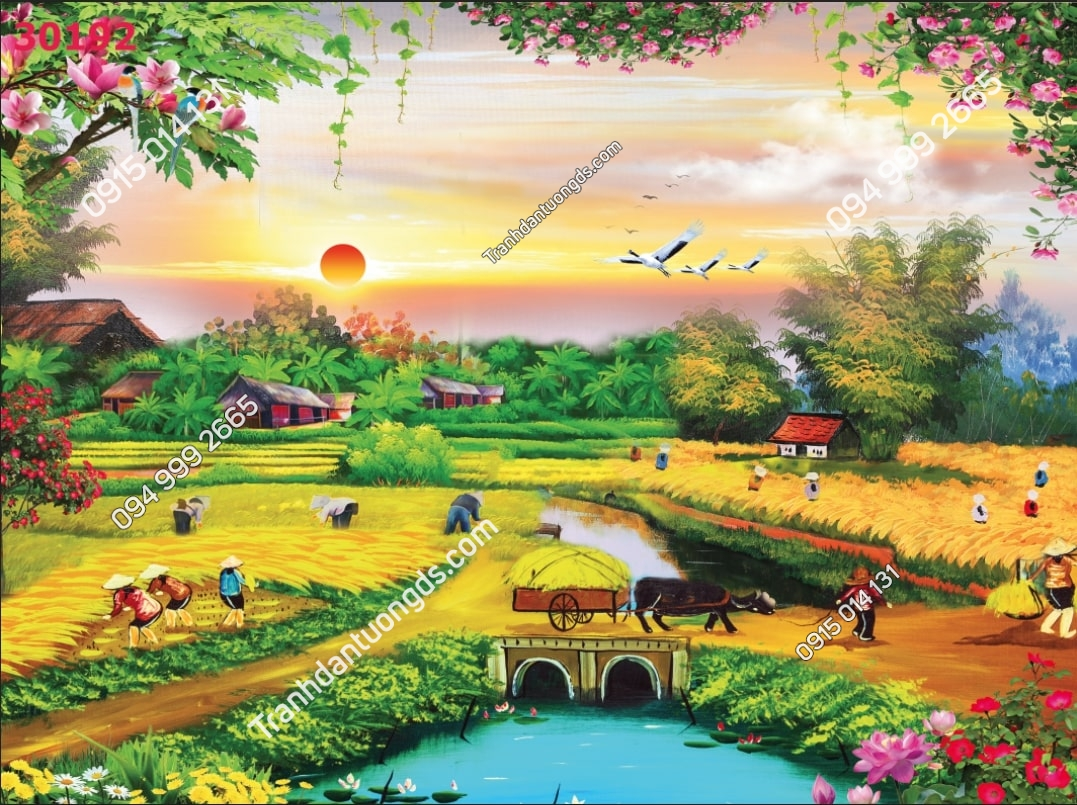Tranh dán tường đồng quê mùa gặt kiểu vẽ 30192