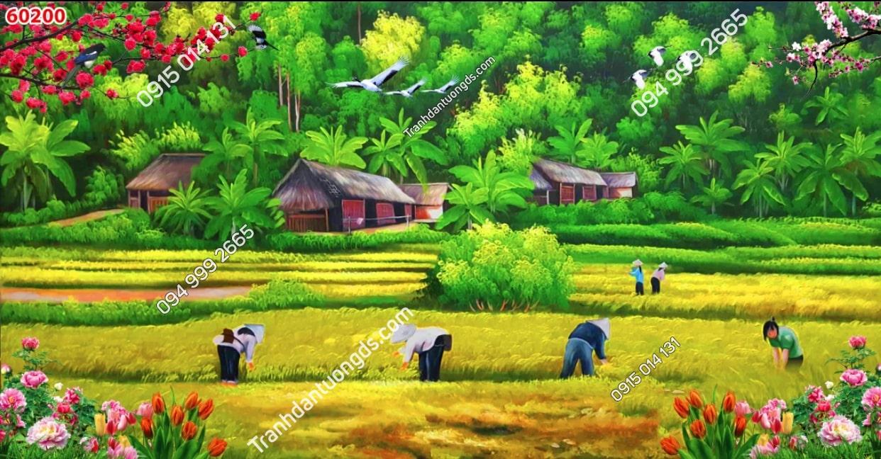 Tranh gặt lúa thôn quê 60200