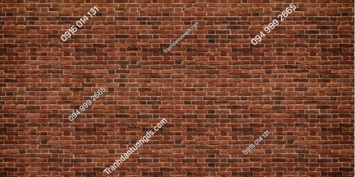 Tranh tường gạch nâu 1495663349